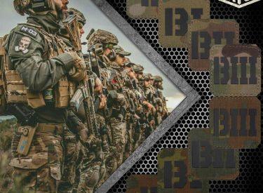 company_multicam_flecktarn_military_laser_patch